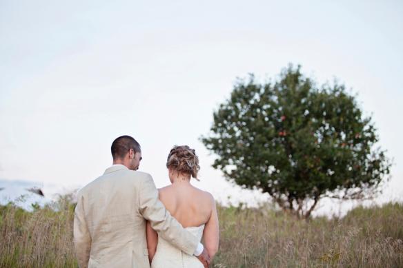 apple tree wedding haliburton